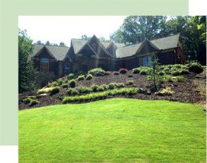 fall lawn care special atlanta
