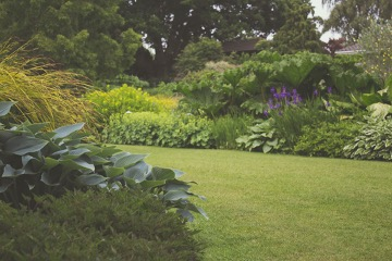 How We Choose the Best Fertilizer for Your Lawn
